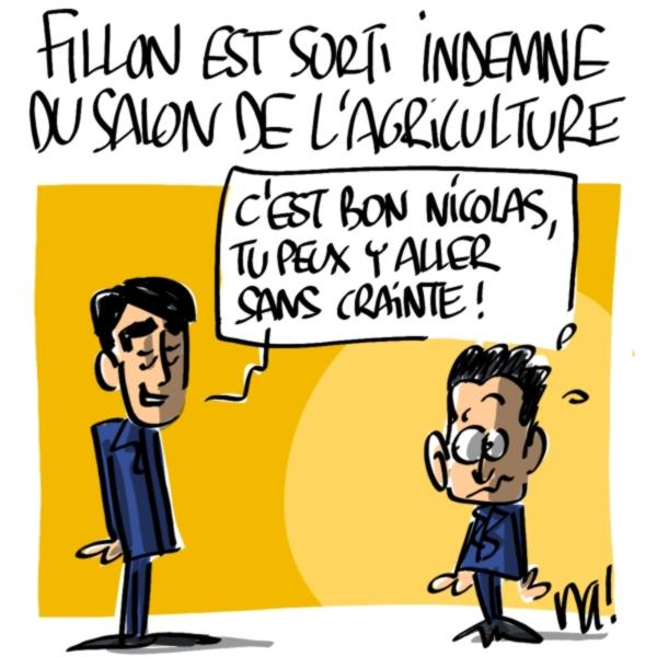 Nactualités : François Fillon est sorti indemne du Salon de l'Agriculture