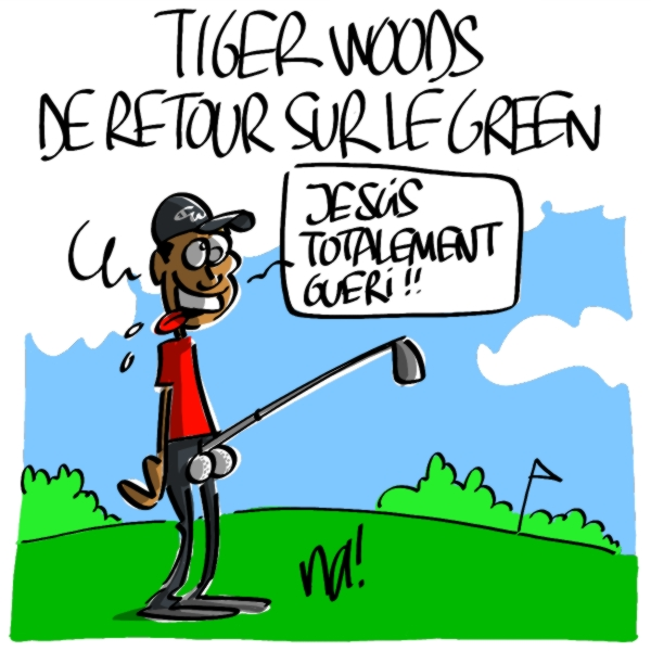 http://www.dessinateur.biz/blog/wp-content/uploads/2010/04/487_tiger_woods.JPG