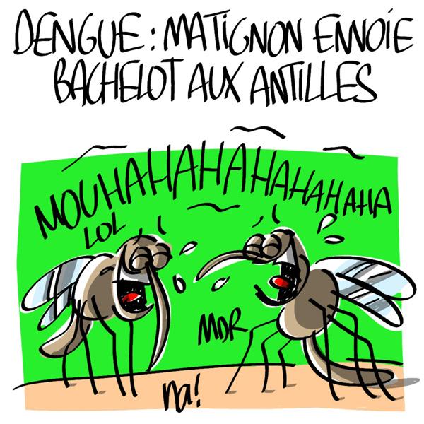 Nactualités : dengue, Matignon envoie Bachelot aux Antilles