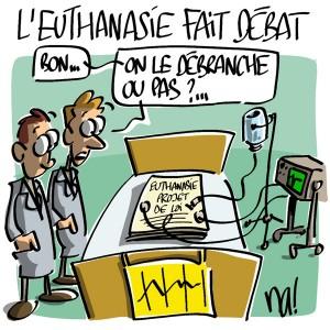 Nactualités : l'euthanasie fait débat…