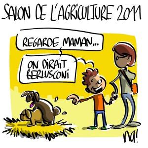 Nactualités : Salon de l'Agriculture 2011