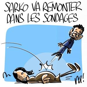 Nactualités : Nicolas Sarkozy va remonter dans les sondages