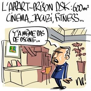 Nactualités : l'appart-prison de DSK : 600m², cinéma, jacuzi, fitness…