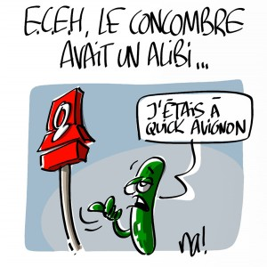 Nactualités : e.c.e.h, le concombre avait un alibi…