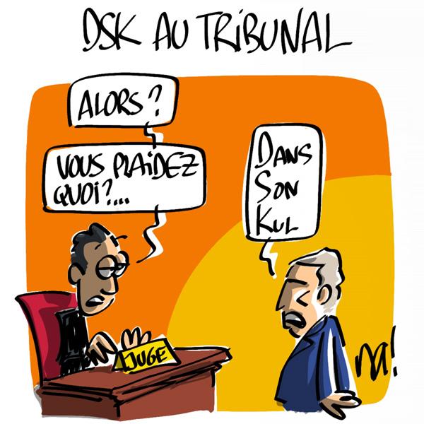 http://www.dessinateur.biz/blog/wp-content/uploads/2011/06/753_DSK_tribunal.jpg