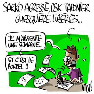 Nactualités : Sarko agressé, DSK Taponier Ghesquière libérés…
