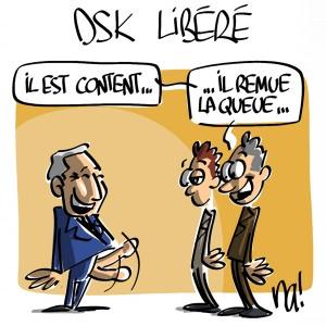 Nactualités : DSK libéré