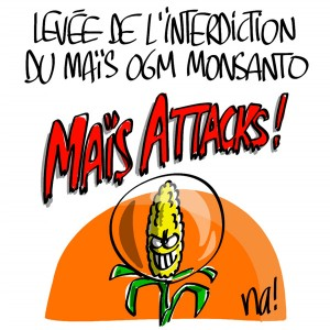 Nactualités : levée de l'interdiction du maïs OGM Monsanto