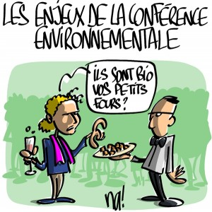 Nactualités : les enjeux de la conférence environnementale