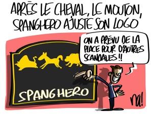 Nactualités : après le cheval, le mouton, Spanghero ajuste son logo