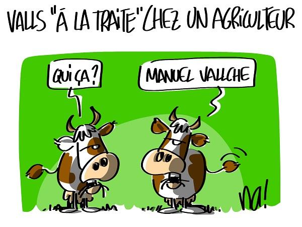 1510_humour_vallche