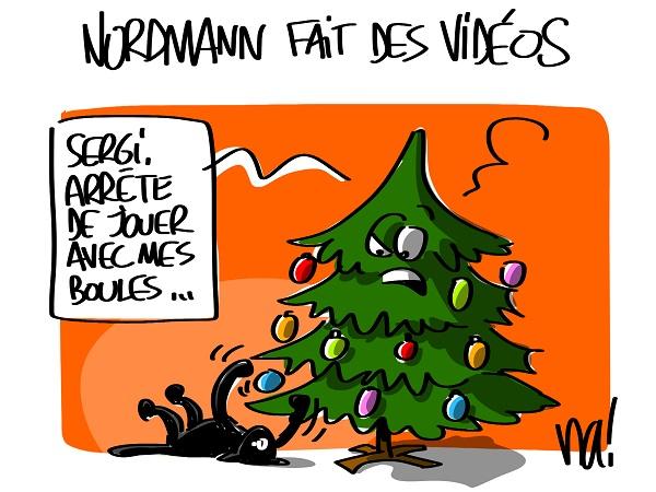 1541_nordmann_fait_des_vidéos