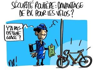 la bicyclette bleue pervenche