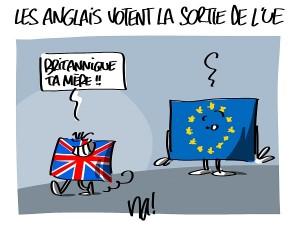 brexit : les Anglais votent la sortie de l'Europe