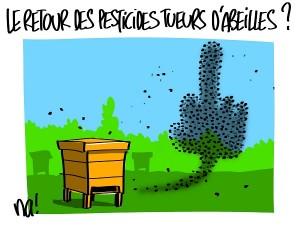 Le retour des pesticides tueurs d'abeille ?