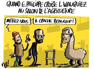 Quand Edouard Philippe croise Laurent Wauquiez au salon de l'agriculture