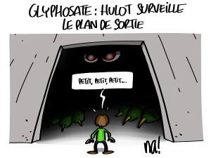 glyphosate : Hulot surveille le plan de sortie
