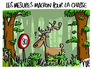 les mesures Macron pour la chasse