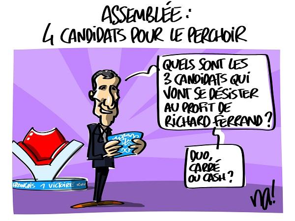 2339_4_candidats_pour_le_perchoir