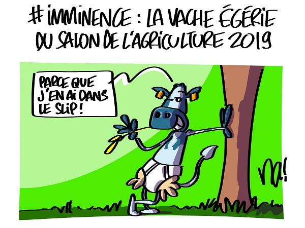 2447_imminence_la_vache_égérie