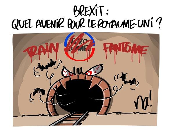 2455_brexit_quel_avenir