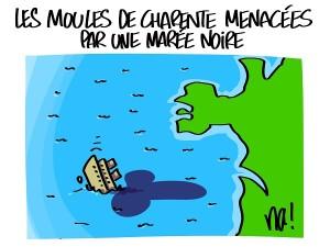 Les moules de Charente menacées par une marée noire