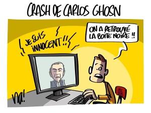 Crash de Carlos Ghosn