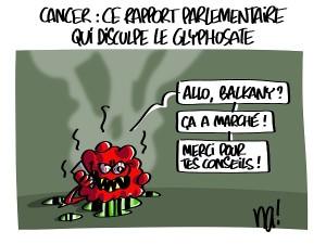 Cancer, ce rapport parlementaire qui disculpe le glyphosate