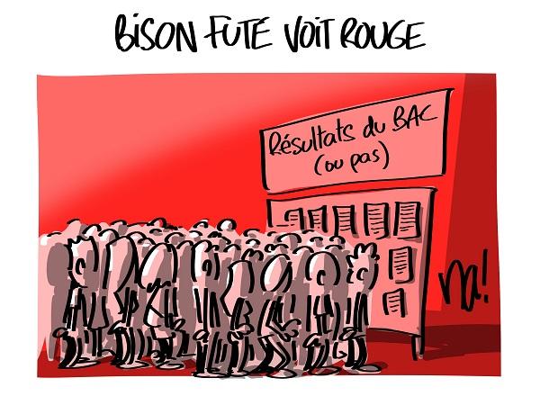 Le dessin du jour (humour en images) - Page 27 Vendredessin_2534_bison_fut%C3%A9_voit_rouge