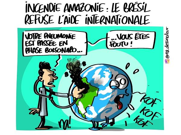 lundessin_2536_amazonie_le_brésil_refuse_l'aide