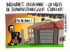 incendies Californie : la villa de Schwarzenegger évacuée