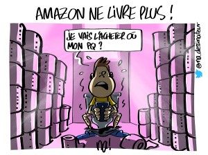 Amazon ne livre plus