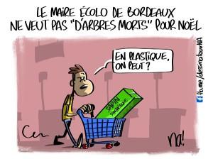 Le Maire écolo de Bordeaux ne veut pas «d'arbres morts» pour Noël