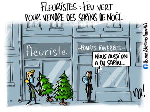 Fleuristes, feu vert pour vendre des sapins de Noël